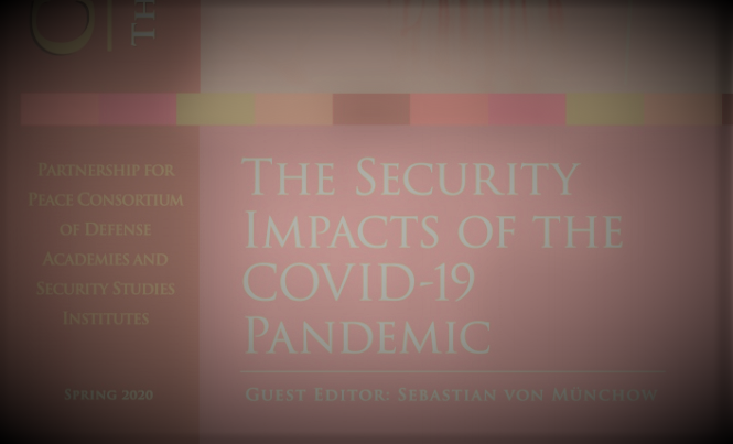 The Security Impacts of the Covid-19 Pandemic